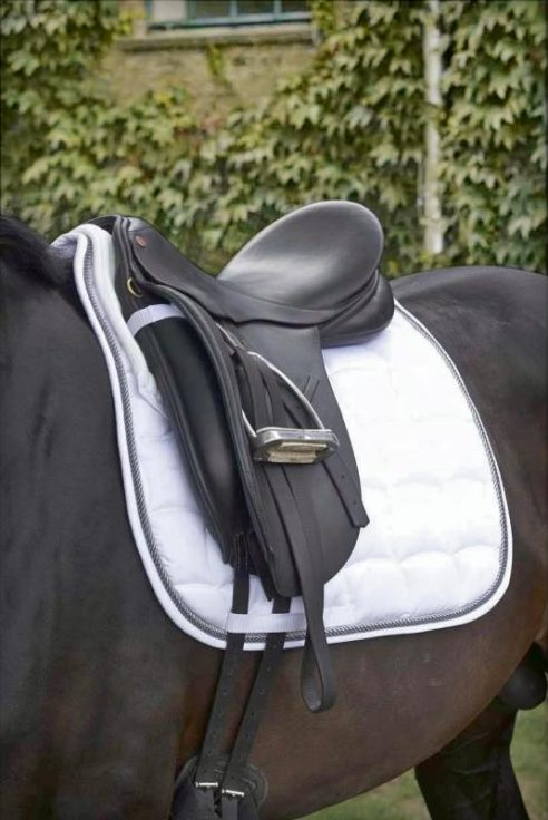 Eskadron Saddle cloths