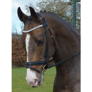 schumacher browband