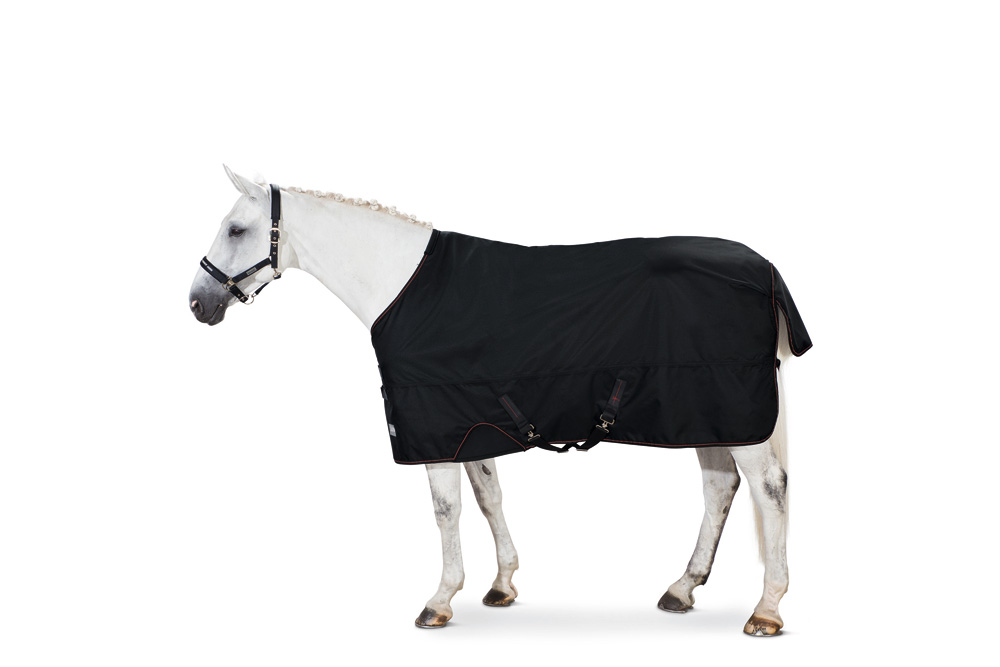 153000311 Turnout Rug GAMMA