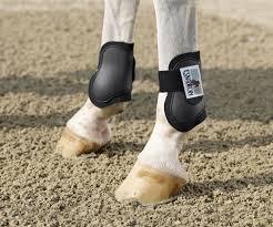 fetlock-boots
