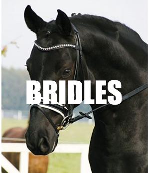 BRIDLES LINK IMG